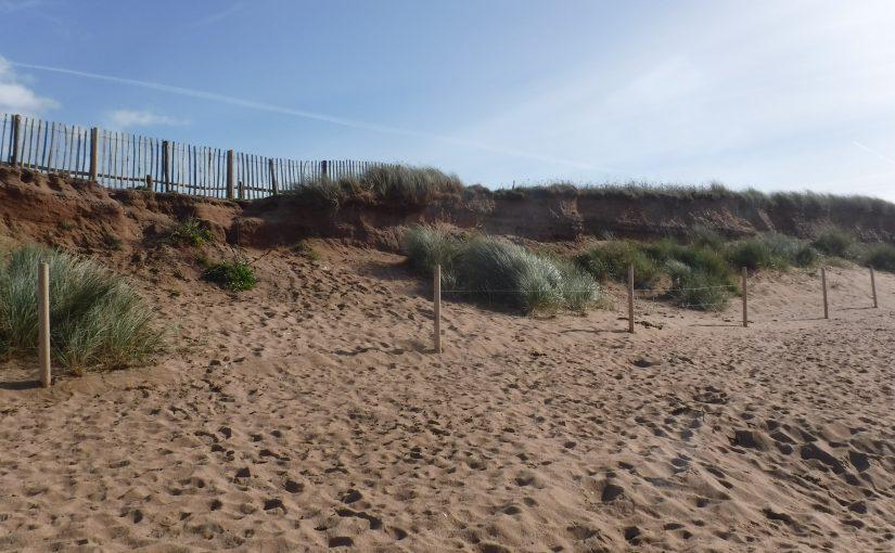 Thurlestone Dunes